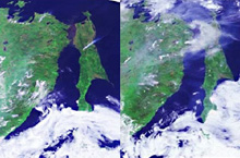 A satellite acquired images of a forest fire in Sakhalin