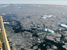 Sea ice on the Arctic Ocean as seen from a ship