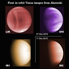 Venus photographed with different wavelengths. Cloud temperature distribution (top left, mid-infrared), distribution of sulfur dioxide, which becomes a component of the sulfuric acid clouds (top right, ultraviolet), sunlight scattering caused by clouds (bottom left, near-infrared), difference in the elevation of clouds (bottom right, near-infrared). (There is no significance in the coloring.)