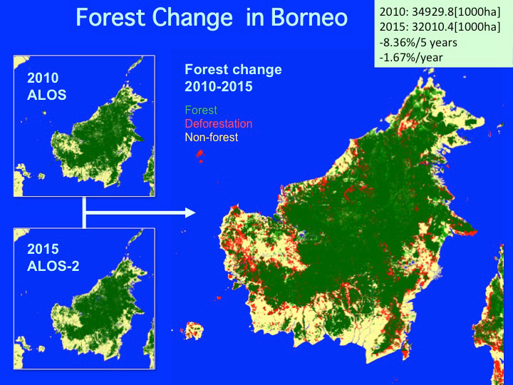 Map Of World Forests.Jaxa Data Release Of Global Forest Non Forest Map By Daichi 2